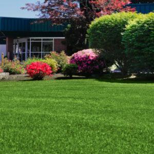 Commercial Landscaping Hillsboro
