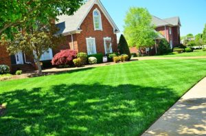 Lawn Aeration Forest Grove